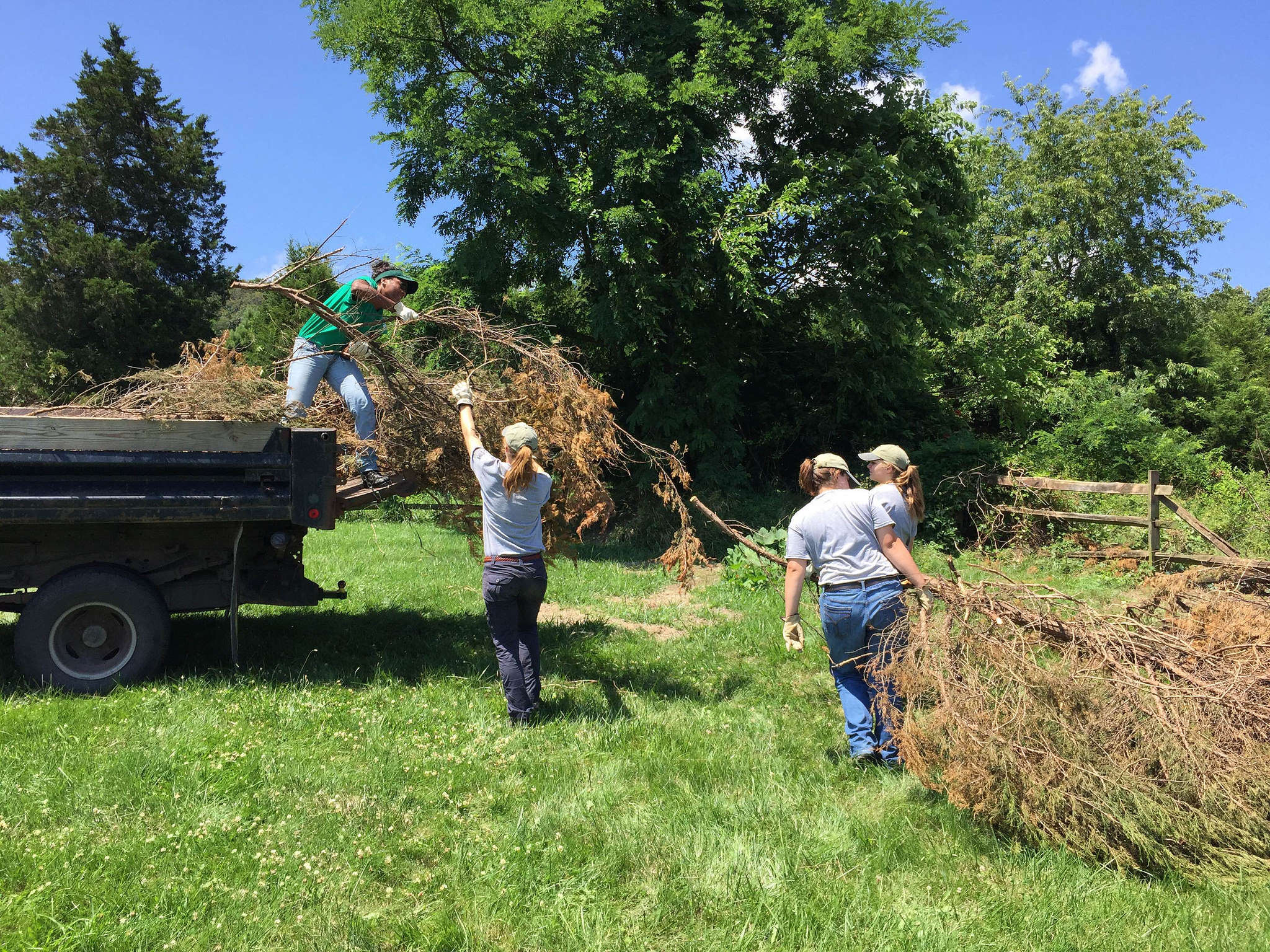 A YCC crew clears an area at Shenandoah River in preparation for building river access/