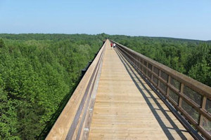 The awesome High Bridge